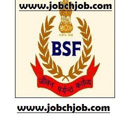 BSF Constable Bharti 2019 Syllabus Radio Operator Mechanic Bharti 2019